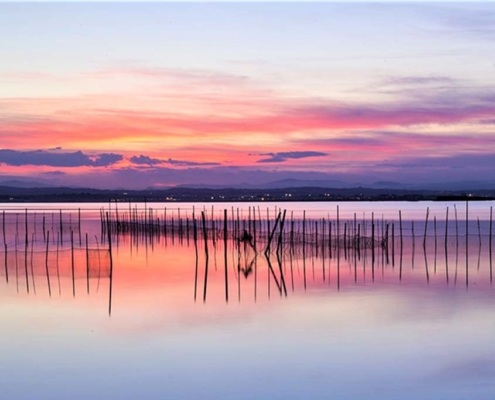Albufera in Valencia, Spain