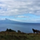Azores-landscape-Portugal